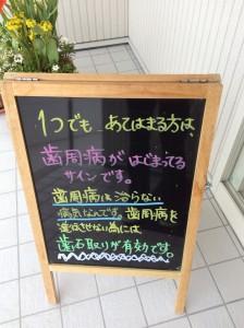 IMG_0646